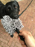 Doggy Dry Paw Cleaner_