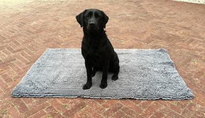 Royal Dry Doormat M