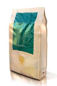 Essential Foods Stamina